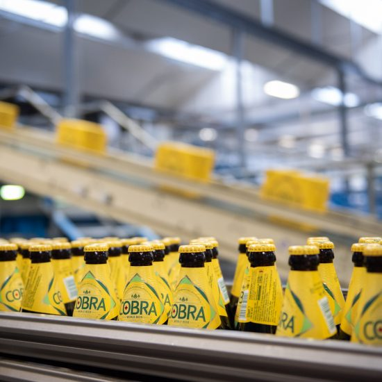 Cobra bottles photographed on the production line